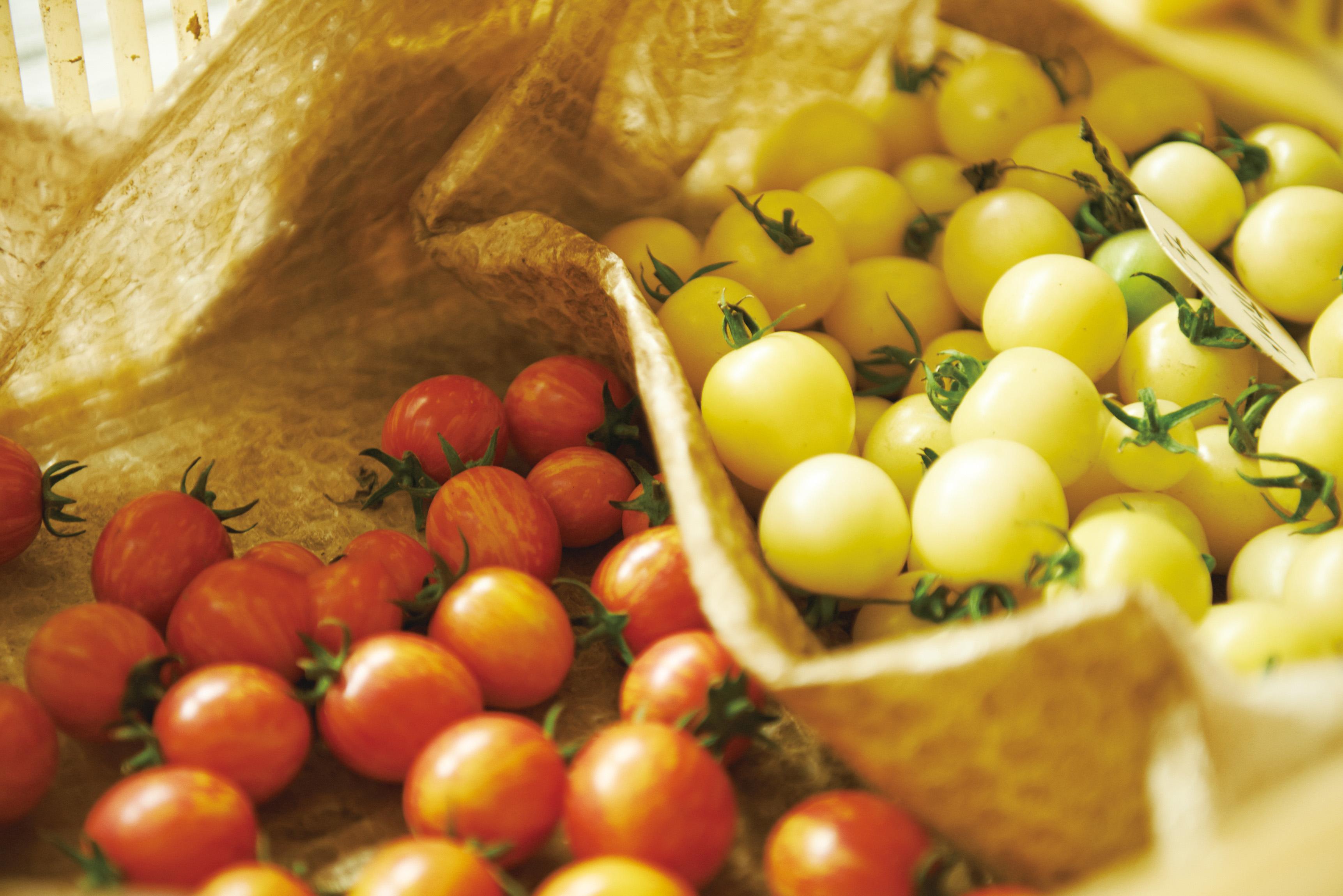 LISAフルーツトマト&プティリサ・ ジュエルボックス