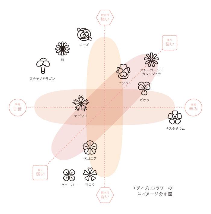 Flovor Chart