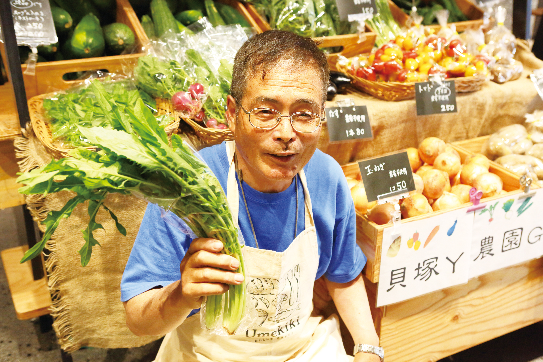 貝塚Y農園の山本さん